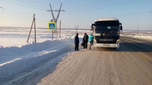 Инспекторы ДПС помогли замерзающим пассажирам междугороднего автобуса, который сломался натрассе