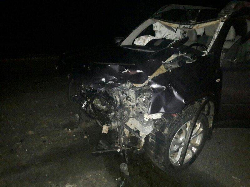 Из-за лося натрассе Тюмень— Ханты-Мансийск случилось смертельное ДТП